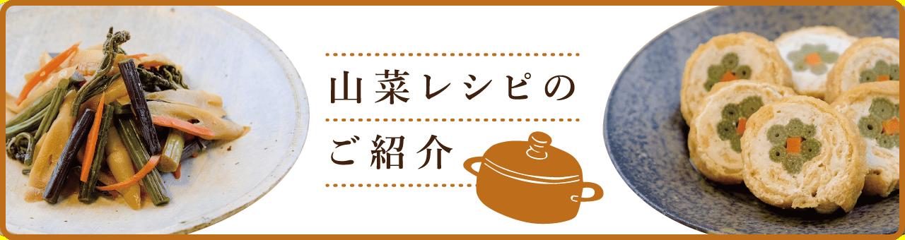 山菜レシピのご紹介