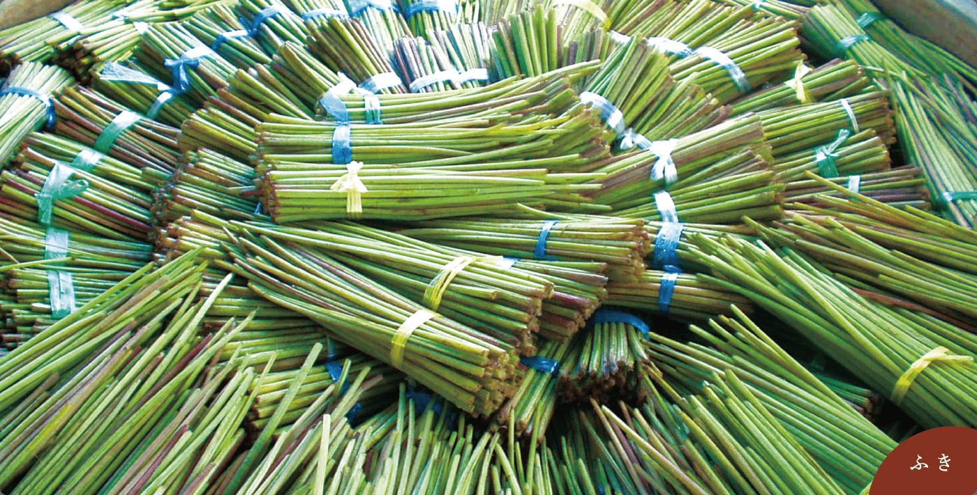 ①山菜を塩蔵